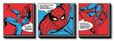 Spiderman - Spider Sense--Canvas Art Set