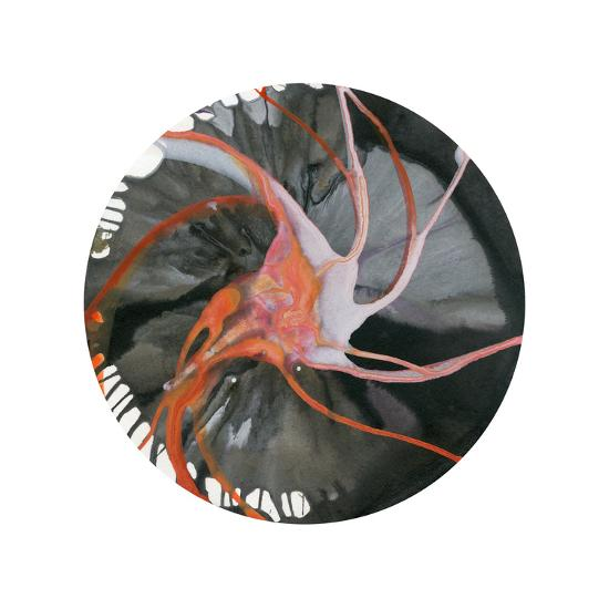 Spin Art 16-Kyle Goderwis-Premium Giclee Print