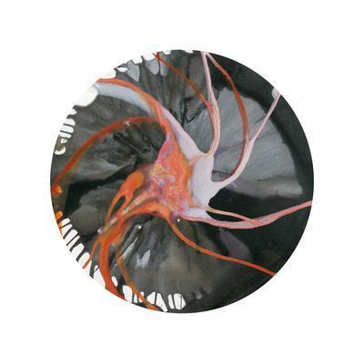 https://imgc.artprintimages.com/img/print/spin-art-16_u-l-q10j0y00.jpg?p=0