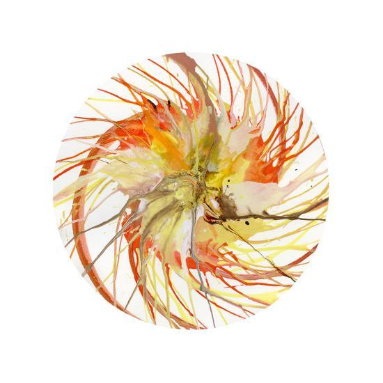 Spin Art 6-Kyle Goderwis-Premium Giclee Print