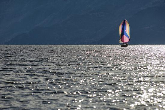 Spinnaker Sailing in British Columbia-Dave Heath-Photographic Print