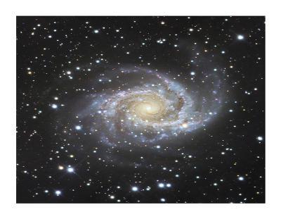 Spiral Galaxy in Antlia-Robert Gendler-Giclee Print
