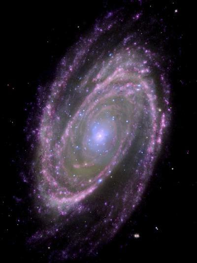 Spiral Galaxy M81, Composite Image--Photographic Print