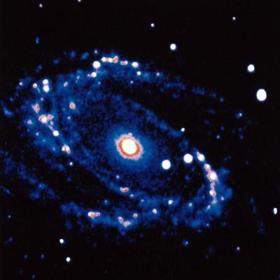 Spiral Galaxy M81 in Constallation of Ursa Minor--Photographic Print