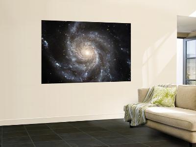 Spiral Galaxy Messier 101 (M101)--Wall Mural