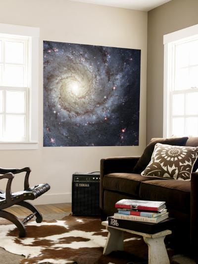 Spiral Galaxy Messier 74--Wall Mural