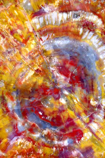 Spiral Galaxy-Douglas Taylor-Photographic Print