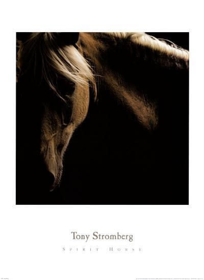Spirit Horse-Tony Stromberg-Art Print