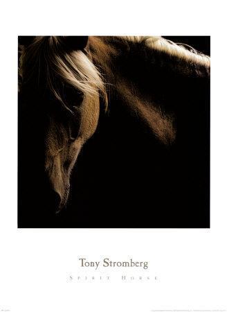 https://imgc.artprintimages.com/img/print/spirit-horse_u-l-f1031c0.jpg?p=0