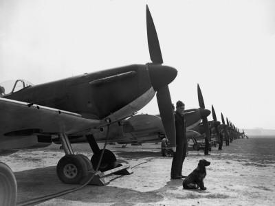 Spitfires at Duxford--Photographic Print