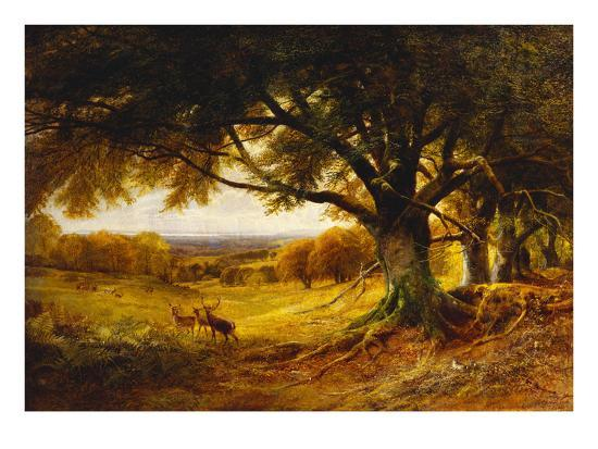 Spithead, Uppark, Sussex-George Cole-Giclee Print