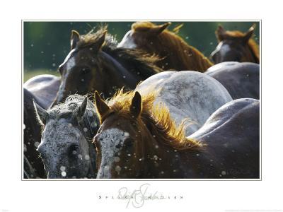 Splash 'n Dash-David R^ Stoecklein-Art Print