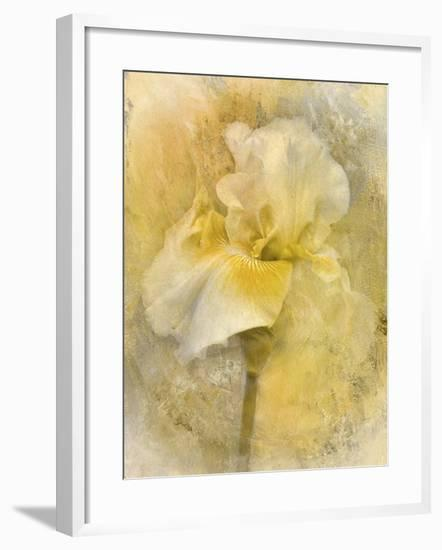 Splash of Spring-Jai Johnson-Framed Giclee Print