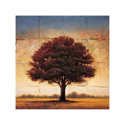 https://imgc.artprintimages.com/img/print/splendor-i_u-l-f7m8jo0.jpg?p=0