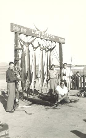Sport Fishing in Mazatlan