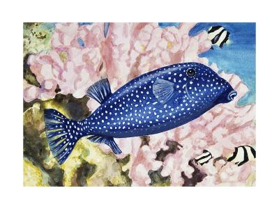 Spotted Boxfish or Spotted Trunkfish (Ostracion Lentiginosus or Ostracion Meleagris), Ostraciidae--Giclee Print