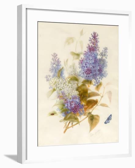 Spray of Lilac-Pauline Gerardin-Framed Giclee Print