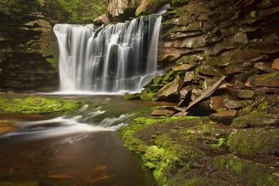 Spring at Elakala Falls-Michael Blanchette-Photographic Print