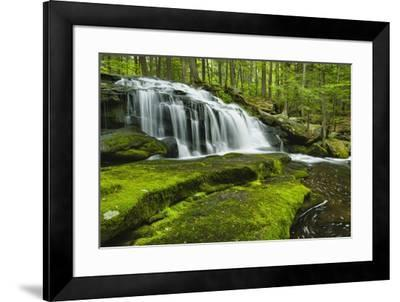Spring At Tucker Brook-Michael Blanchette Photography-Framed Giclee Print