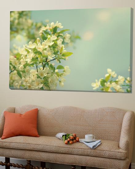 Spring Beauty I-Sue Schlabach-Loft Art
