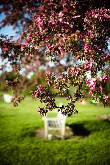 Spring Bench II-Beth Wold-Photographic Print