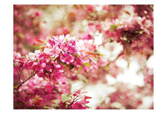 Spring Blooms-Sonja Quintero-Art Print