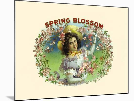Spring Blossom- Witsch & Schmitt Lihto.-Mounted Premium Giclee Print