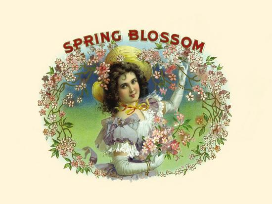 Spring Blossom- Witsch & Schmitt Lihto.-Art Print