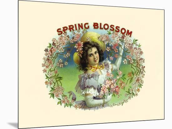 Spring Blossom-Witsch & Schmitt Lihto.-Mounted Art Print