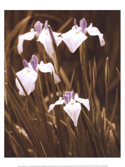Spring Blossoms II-Boyce Watt-Art Print