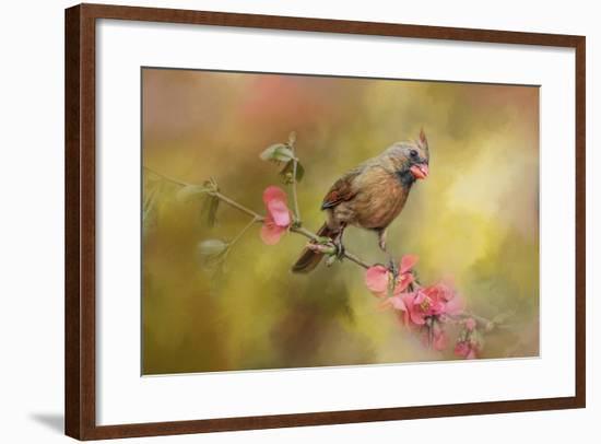Spring Cardinal 1-Jai Johnson-Framed Giclee Print