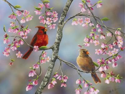 Spring Cardinals-Sarah Davis-Giclee Print