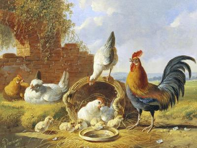 Spring Chickens-Albertus Verhosen-Giclee Print