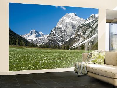 Spring-Crocus, Karwendel Range, Falzthurntal, Mt Lamsenspitze, Mt Sonnjoch, Bavaria-Martin Zwick-Wall Mural – Large