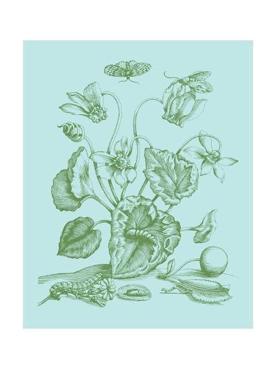 Spring Cyclamen I-Vision Studio-Art Print
