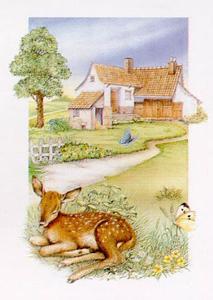 Spring, Deer