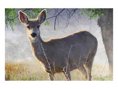 Spring Doe-Chris Vest-Art Print