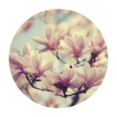 Spring Dream - Sphere-Irene Suchocki-Giclee Print