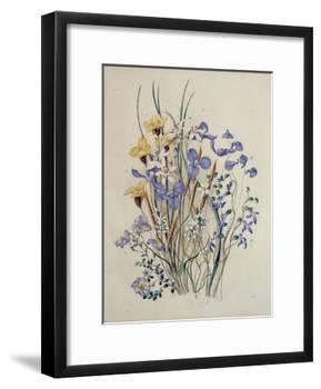 Spring Flowers, 19th Century-Caroline Louisa Meredith-Framed Giclee Print