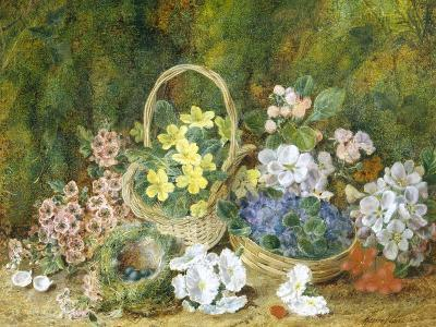 Spring Flowers and a Bird's Nest on a Mossy Bank-George Clare-Giclee Print