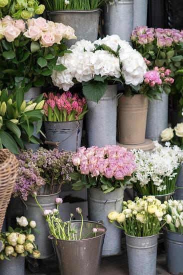 Spring Flowers Including Lilacs, Hydrangea, Ranunculus and Roses-Georgianna Lane-Photographic Print