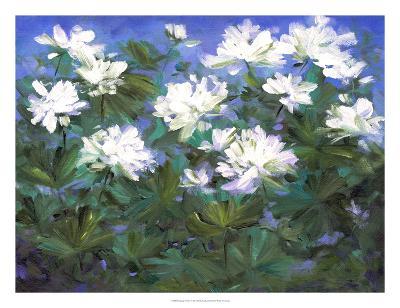 Spring Flowers-Sheila Finch-Art Print