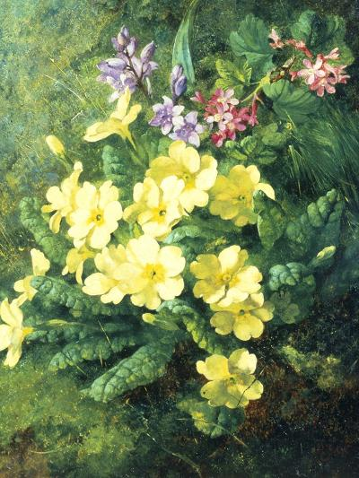 Spring Flowers-Annie Feray Mutrie-Giclee Print