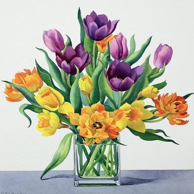https://imgc.artprintimages.com/img/print/spring-flowers_u-l-q1gcxpr0.jpg?p=0