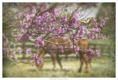 Spring has Sprung-PHBurchett-Art Print