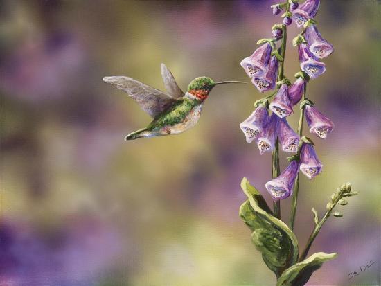 Spring Hummingbird-Sarah Davis-Giclee Print