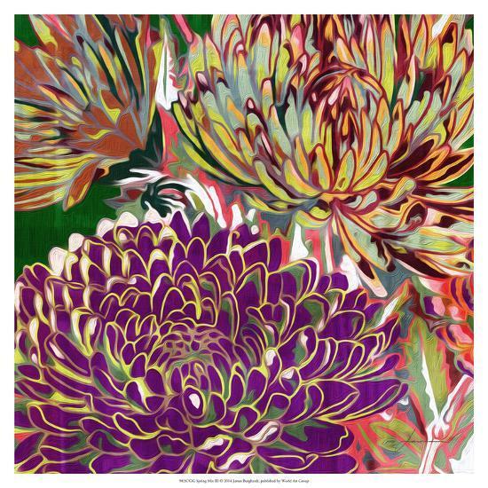 Spring Mix III-James Burghardt-Art Print