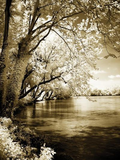 Spring on the River I-Alan Hausenflock-Photographic Print