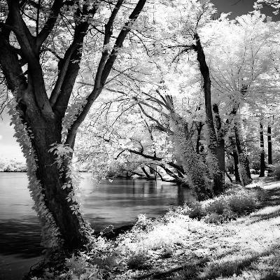 Spring on the River Square II-Alan Hausenflock-Art Print