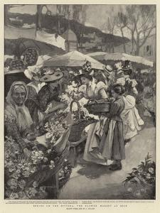 Spring on the Riviera, the Flower Market at Nice